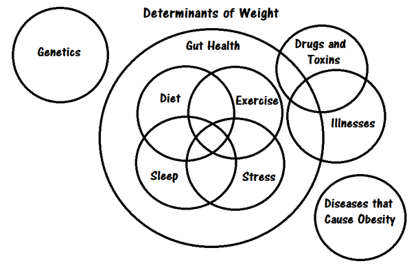 Weight Circles
